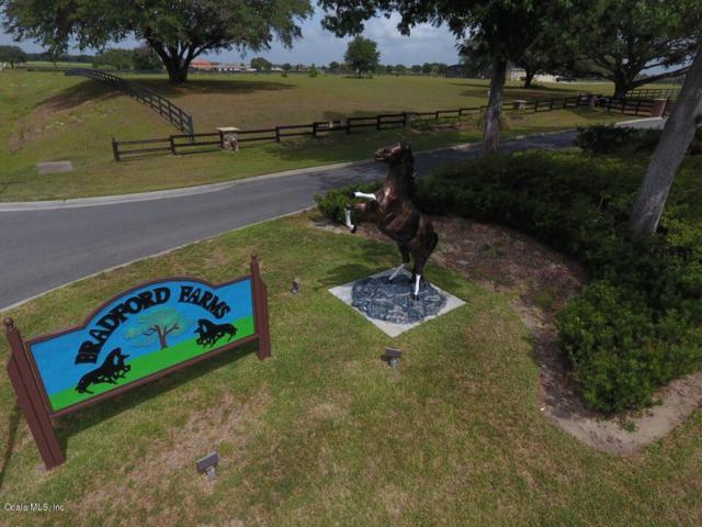 Tbd SW 93 Lane, Ocala, FL 34476 (MLS #518886) :: Bosshardt Realty