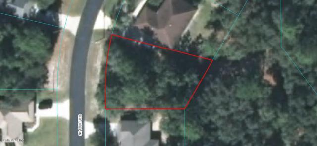 0 NE 130th Terrace, Silver Springs, FL 34488 (MLS #519469) :: Bosshardt Realty
