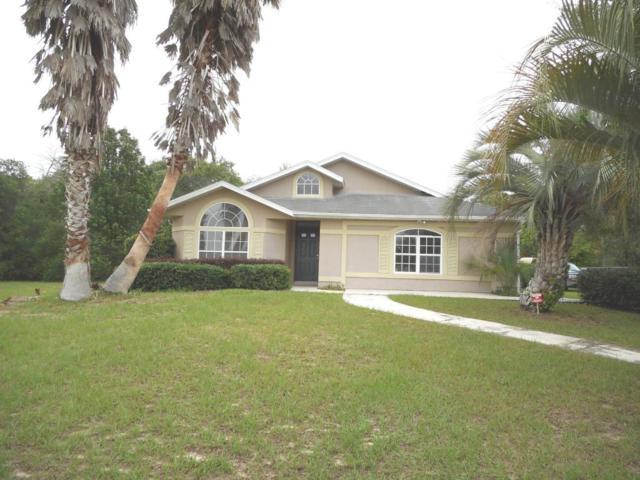 3028 SW 143rd Place Road, Ocala, FL 34473 (MLS #519647) :: Bosshardt Realty