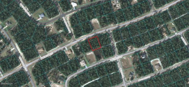 0 Marion Oaks Lane, Ocala, FL 34473 (MLS #520143) :: Realty Executives Mid Florida