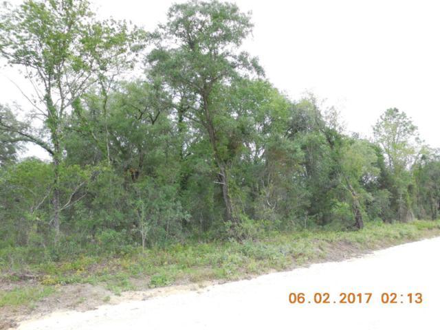 14951 SE 63rd Lane, Morriston, FL 32668 (MLS #520320) :: Bosshardt Realty