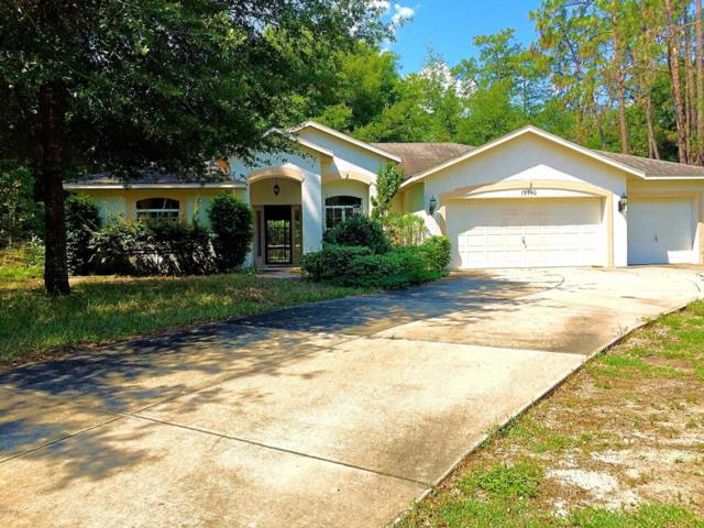 19940 SW 96th Lane, Dunnellon, FL 34432 (MLS #520448) :: Realty Executives Mid Florida