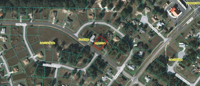 Lot 3 Pine Trace, Ocala, FL 34472 (MLS #520486) :: Bosshardt Realty