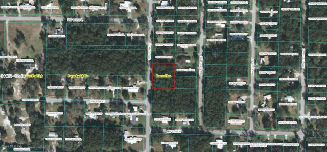 Lot 20 NW 113th Court, Ocala, FL 34482 (MLS #520547) :: Bosshardt Realty