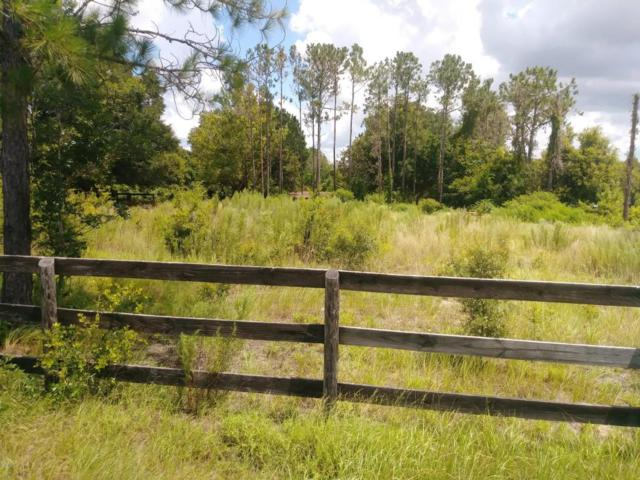 14865 SE 180th Street, Weirsdale, FL 32195 (MLS #521167) :: Realty Executives Mid Florida