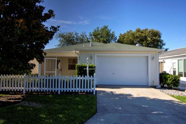 8221 SE 169th Palownia Loop, The Villages, FL 32162 (MLS #521207) :: Realty Executives Mid Florida