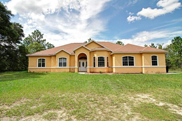 12211 SW 80th Street, Dunnellon, FL 34432 (MLS #521316) :: Realty Executives Mid Florida