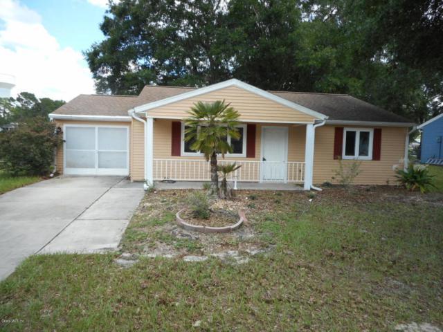 10833 SW 87th Terrace, Ocala, FL 34481 (MLS #521495) :: Realty Executives Mid Florida