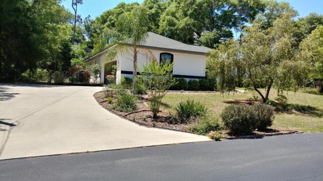 13052 NE 7th Loop, Silver Springs, FL 34488 (MLS #522264) :: Bosshardt Realty