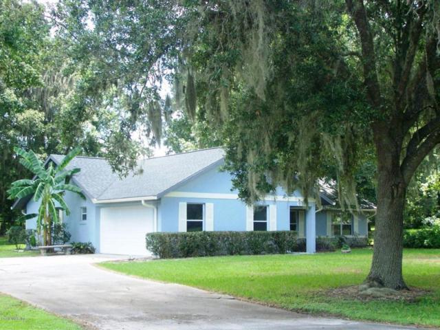 685 SW 89th Terrace, Ocala, FL 34481 (MLS #522480) :: Bosshardt Realty