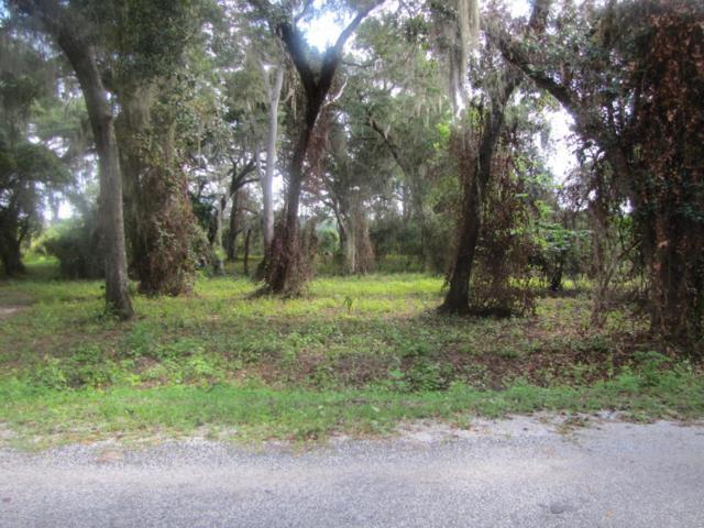 TBD Se 164th Circle, Ocklawaha, FL 32179 (MLS #523018) :: Bosshardt Realty