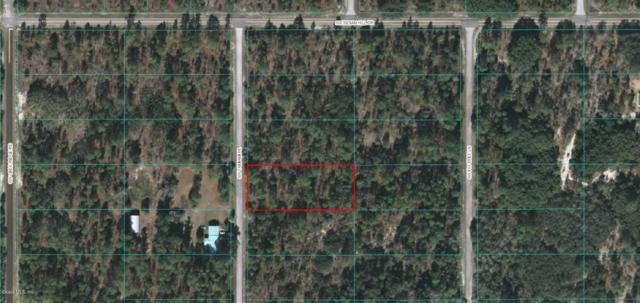 Lot 39 SW Tamiami  Pl, Dunnellon, FL 34431 (MLS #523193) :: Pepine Realty