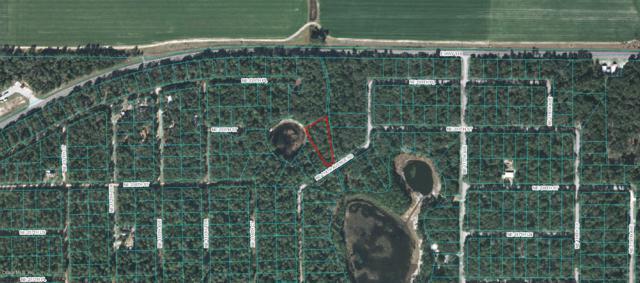 0 NE 114 Ave Road, Fort Mccoy, FL 32134 (MLS #523896) :: Bosshardt Realty