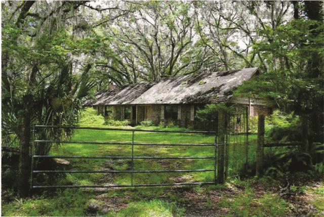 18128 Cr 2082, Hawthorne, FL 32640 (MLS #524176) :: Realty Executives Mid Florida
