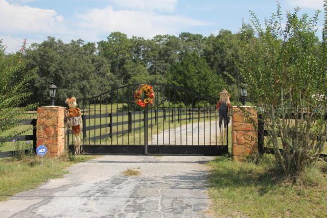 16 Meadow Wood Drive, Ocala, FL 34482 (MLS #524549) :: Realty Executives Mid Florida