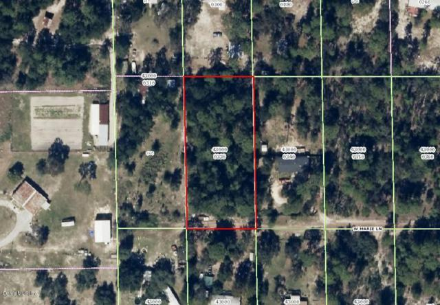 6951 W Mable Lane, Dunnellon, FL 34433 (MLS #524695) :: Bosshardt Realty