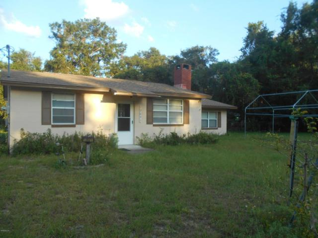 12631 NE 243rd Avenue, Salt Springs, FL 32134 (MLS #524829) :: Bosshardt Realty