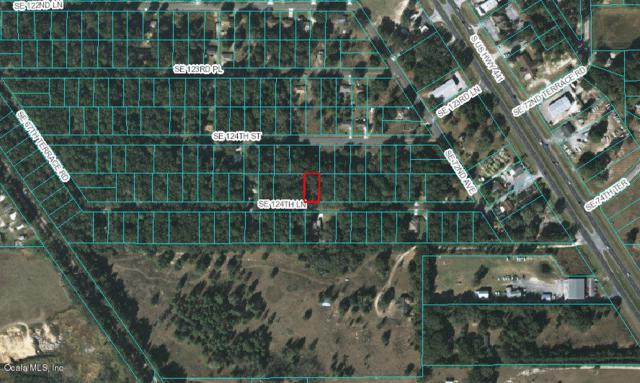 0 SE 124 Lane, Belleview, FL 34420 (MLS #524947) :: Bosshardt Realty