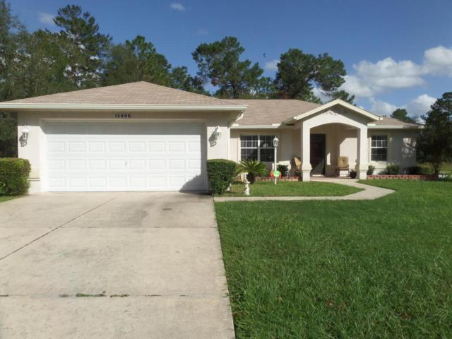 12895 SW 50 Terrace, Ocala, FL 34473 (MLS #526053) :: Realty Executives Mid Florida