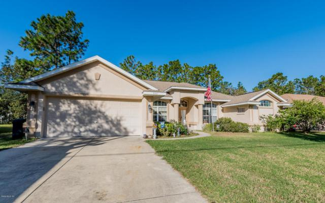 7101 SW 131st Loop, Ocala, FL 34473 (MLS #527295) :: Realty Executives Mid Florida