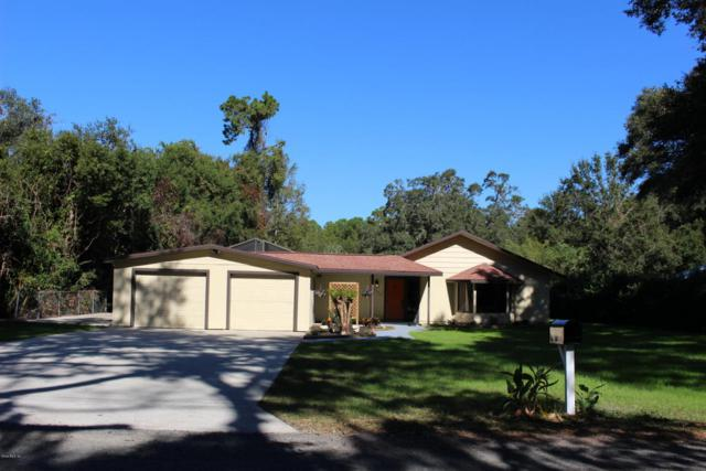 13225 SE 120th Street, Ocklawaha, FL 32179 (MLS #527576) :: Realty Executives Mid Florida