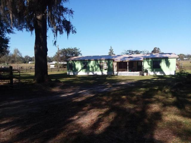 3005 W Hwy 329, Reddick, FL 32686 (MLS #527585) :: Realty Executives Mid Florida