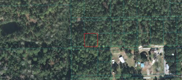 0 NE 156th Lane, Fort Mccoy, FL 32134 (MLS #527968) :: Bosshardt Realty