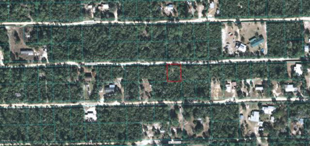 00 NE 235th Place, Fort Mccoy, FL 32134 (MLS #527974) :: Bosshardt Realty