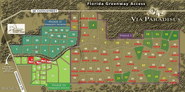 0 SE 116th Pl Road, Ocala, FL 34480 (MLS #528020) :: Bosshardt Realty