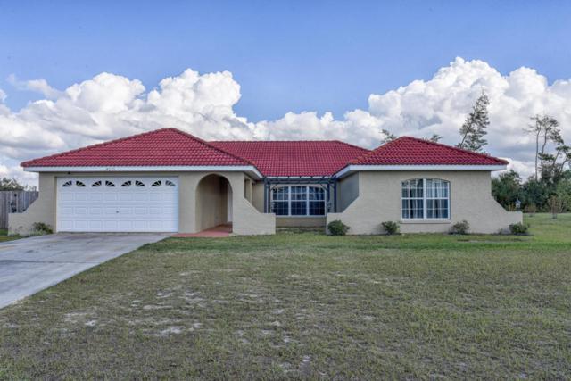 4521 SW 160th Loop, Ocala, FL 34473 (MLS #528182) :: Realty Executives Mid Florida