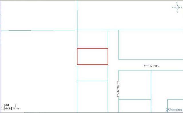 0 SW 177 Court, Dunnellon, FL 34432 (MLS #528411) :: Bosshardt Realty