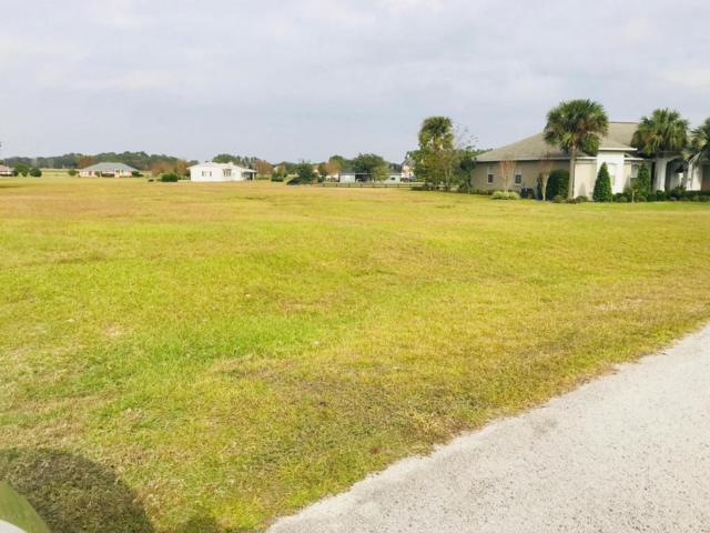 00 SE 99th Place #13, Belleview, FL 34420 (MLS #528414) :: Bosshardt Realty
