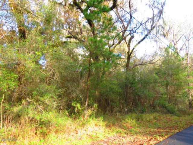 TBD E Lake View Drive, Ocala, FL 34482 (MLS #528481) :: Thomas Group Realty