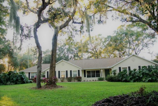 3626 SW 51st Terrace, Ocala, FL 34474 (MLS #529308) :: Bosshardt Realty