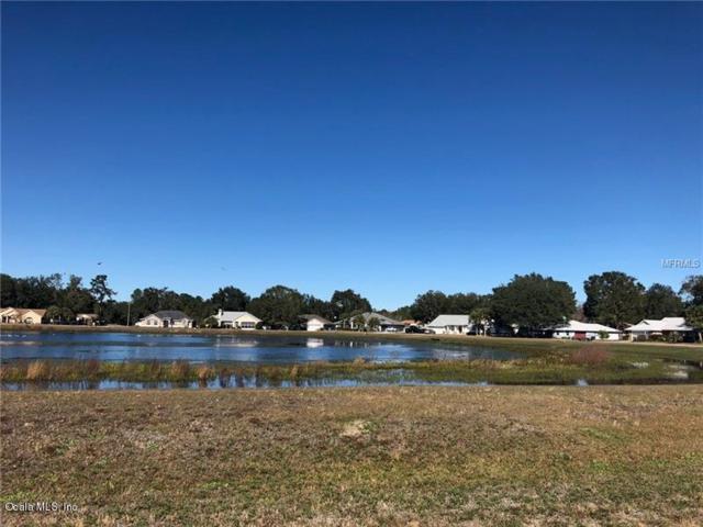 Lot 16 Bahia Trace Circle, Ocala, FL 34470 (MLS #529434) :: Bosshardt Realty