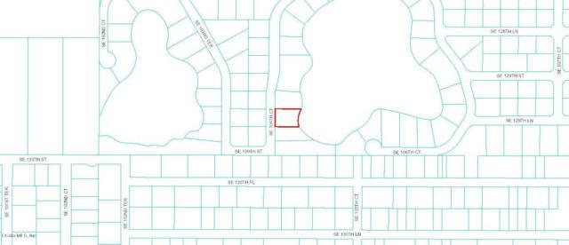 0 SE 104th Court, Belleview, FL 34420 (MLS #529530) :: Bosshardt Realty