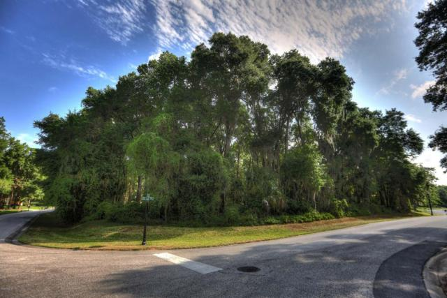 0 SE 69th Place, Ocala, FL 34480 (MLS #529611) :: Realty Executives Mid Florida