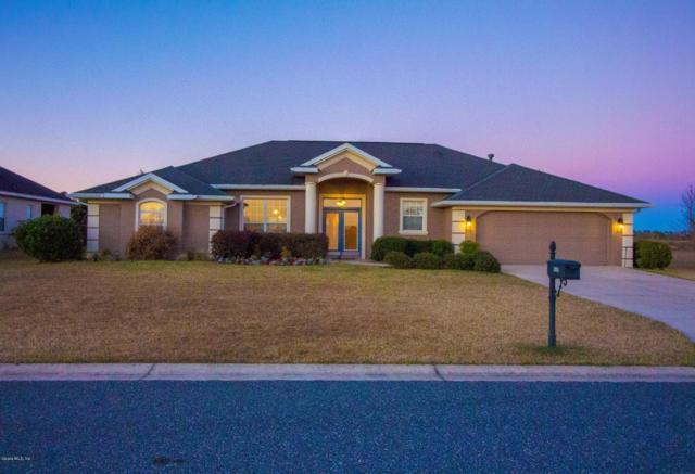 6359 SE 96th Street, Belleview, FL 34420 (MLS #529675) :: Bosshardt Realty