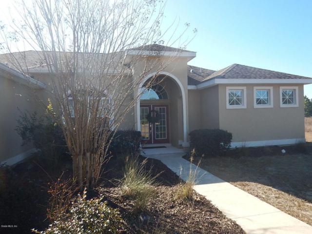 18084 SW 65th Loop, Dunnellon, FL 34432 (MLS #529718) :: Bosshardt Realty