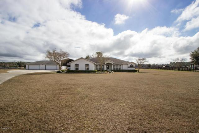 7350 NW 83rd Court Road, Ocala, FL 34482 (MLS #529878) :: Realty Executives Mid Florida