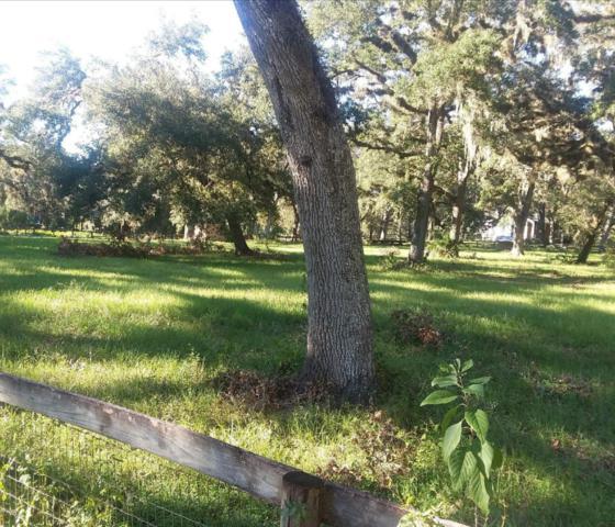 00 NE Hwy 314, Silver Springs, FL 34488 (MLS #529920) :: Realty Executives Mid Florida
