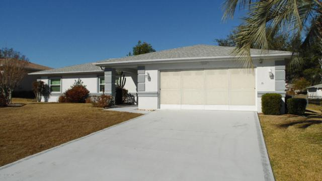 10047 SW 62nd Circle, Ocala, FL 34476 (MLS #530101) :: Realty Executives Mid Florida