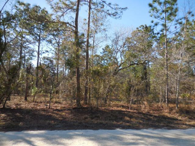 2950 SE 132nd Court, Morriston, FL 32668 (MLS #530201) :: Realty Executives Mid Florida