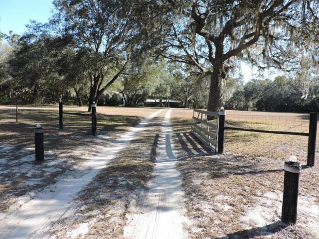151 Hall Road, Melrose, FL 32666 (MLS #530217) :: Realty Executives Mid Florida