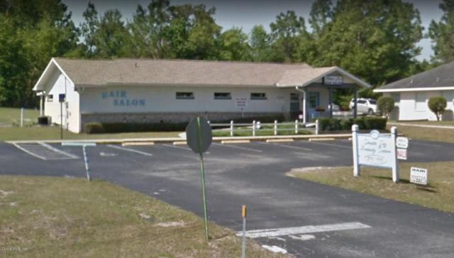 8430 SW 103rd Street Road, Ocala, FL 34481 (MLS #530446) :: Pepine Realty