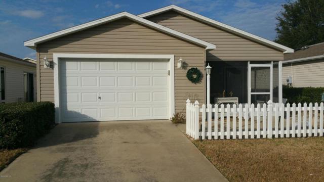 9339 SE 173rd Hyacinth Street, The Villages, FL 32162 (MLS #530553) :: Bosshardt Realty
