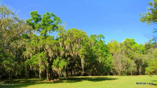 1.5ac - #4 SE Fort King St., Ocala, FL 34471 (MLS #530693) :: Bosshardt Realty