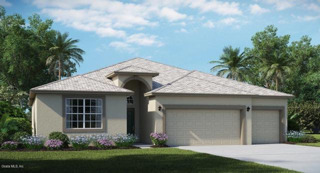 9238 60th Court Road, Ocala, FL 34476 (MLS #530868) :: Bosshardt Realty