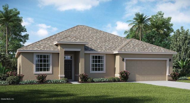 6088 SW 89th St Road, Ocala, FL 34476 (MLS #530878) :: Realty Executives Mid Florida