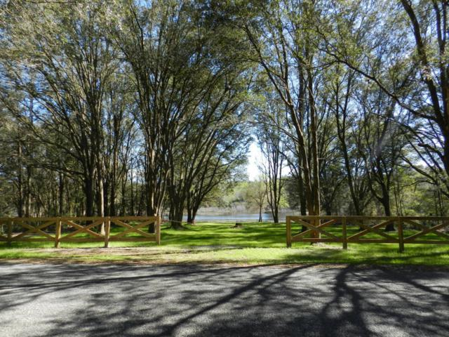 00 SW 36th Loop, Dunnellon, FL 34432 (MLS #530927) :: Pepine Realty
